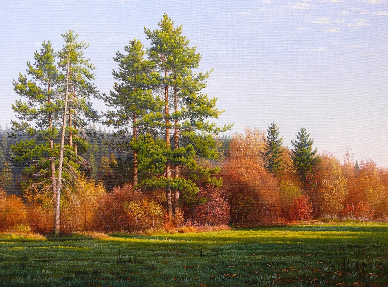 Emil Mlynarcik - Pine trees