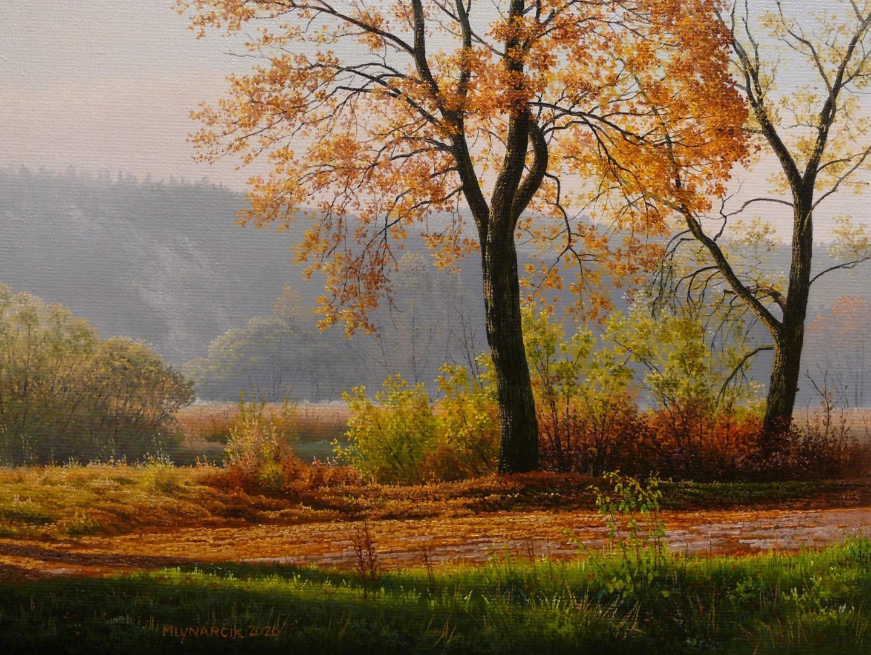 Emil Mlynarcik - Foggy morning by the river