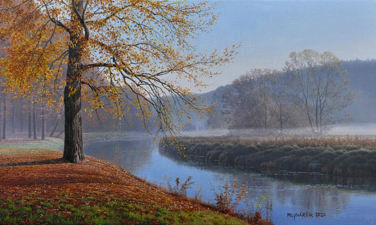Emil Mlynarcik - Autumn fog by the river