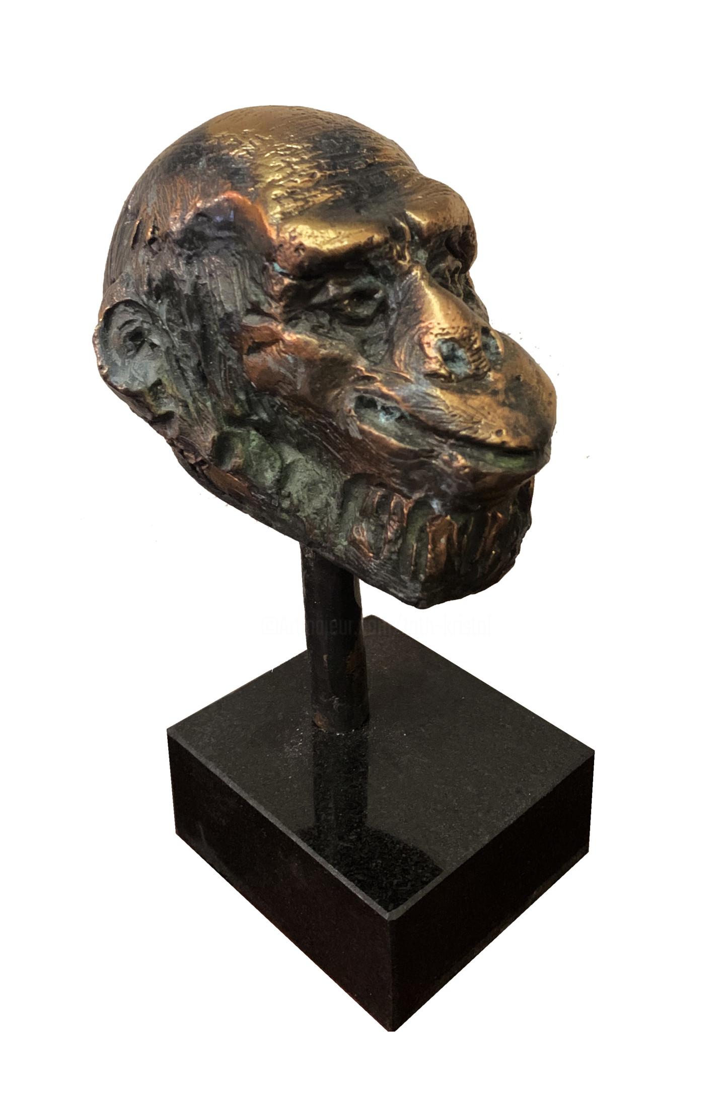 Kristof Toth - Monkey head