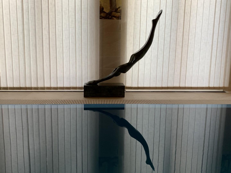Kristof Toth - Dive (big)