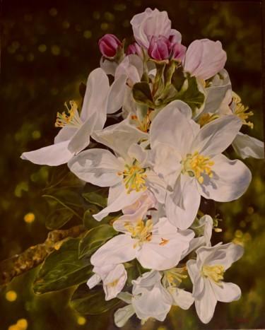 Spring in my garden / Printemps dans mon jardin