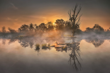 Autumn morning in lowlands