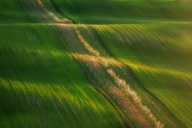 Moravian green wawes