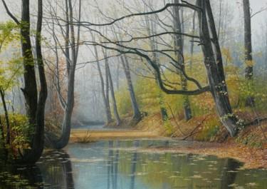 Forest creek / Ruisseau de la forêt