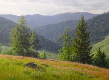 Mountain meadow / Prairie de montagne