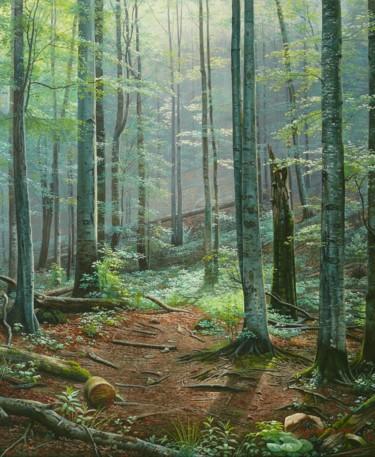 Deep forest / Forêt profonde