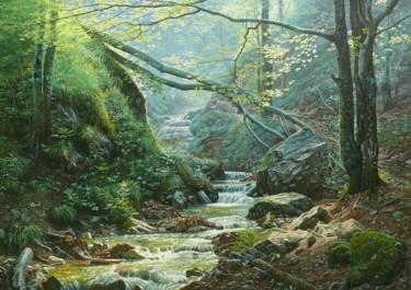 Forest stream / Ruisseau de la forêt
