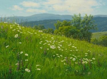 Floral spring meadow / Prairie printanière florale