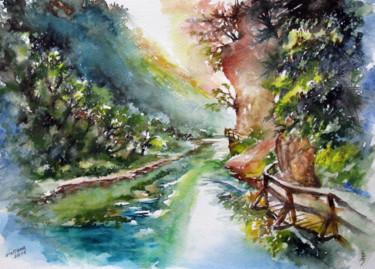 Through the Vintgar gorge